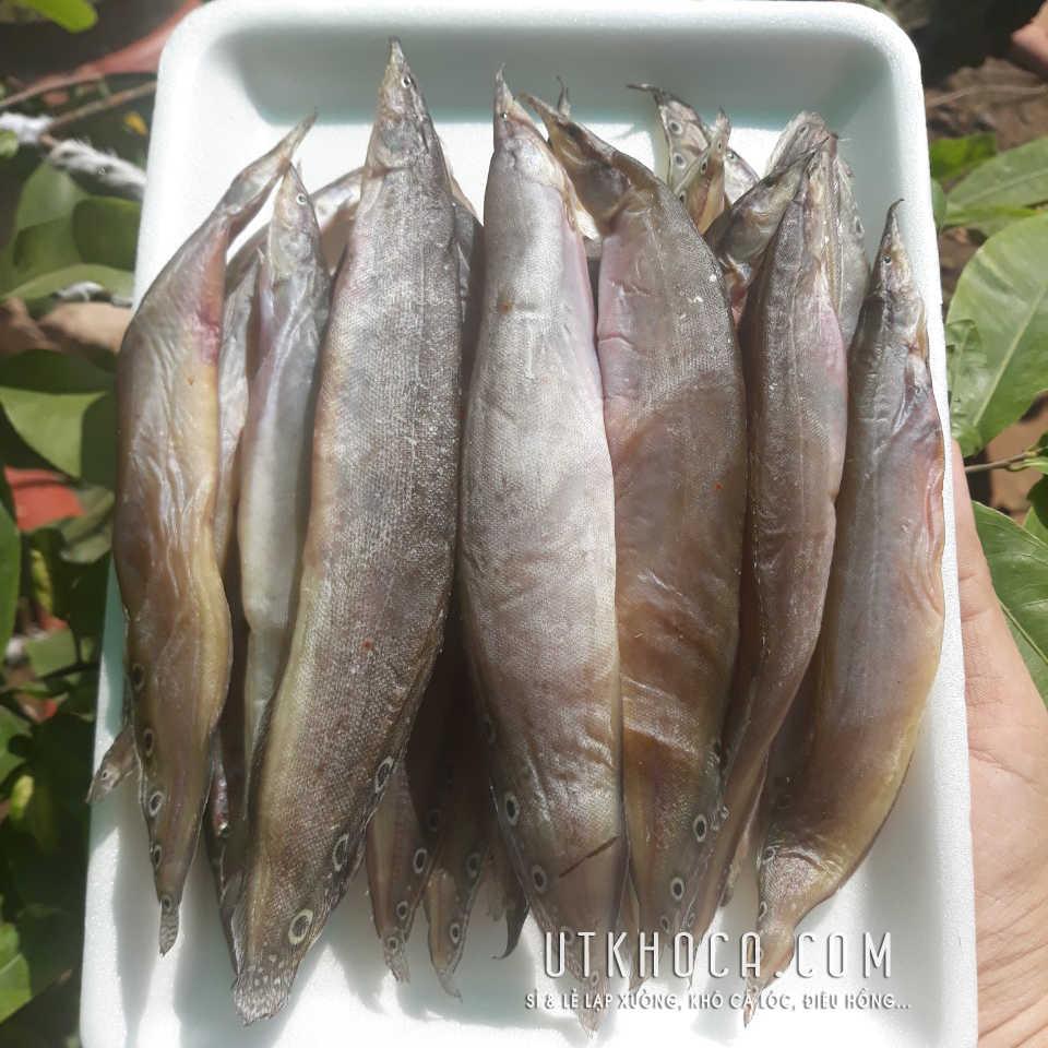Khô cá chạch cá to thịt dày dẻo dai